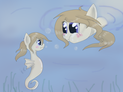 Size: 2048x1536   Tagged: safe, artist:askponybrandenburg, pegasus, pony, sea pony, blushing, brandenburg, duality, duo, female, hetalia, looking at each other, mare, ponified, puffy cheeks, seaponified, self ponidox, species swap, underwater