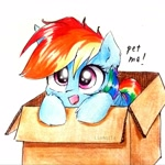 Size: 2231x2231 | Tagged: safe, artist:liaaqila, rainbow dash, pegasus, pony, box, bronybait, cute, dashabetes, pony in a box, simple background, solo, traditional art, white background