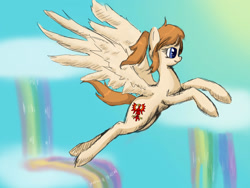 Size: 1600x1200 | Tagged: safe, artist:tomat-in-cup, pegasus, pony, brandenburg, cloud, female, flying, heterochromia, mare, ponified, rainbow, rainbow waterfall, solo