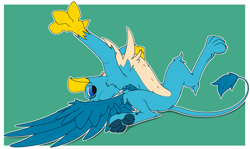 Size: 1967x1174   Tagged: safe, artist:starrypallet, gallus, griffon, behaving like a cat, catbird, chest fluff, cute, featureless crotch, gallabetes, griffons doing cat things, male, pale belly, paws, simple background, solo, spread wings, stretching, upside down, wings