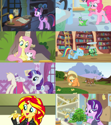 Size: 2560x2880 | Tagged: safe, edit, edited screencap, screencap, angel bunny, applejack, fluttershy, gummy, opalescence, owlowiscious, phyllis, pinkie pie, rainbow dash, rarity, ray, starlight glimmer, sunset shimmer, tank, twilight sparkle, winona, a horse shoe-in, eqg summertime shorts, equestria girls, feeling pinkie keen, just for sidekicks, may the best pet win, owl's well that ends well, pet project, she talks to angel, suited for success, candle, collage, golden oaks library, mane eight, pet, plant, starlight's office, stick