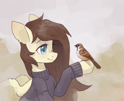 Size: 1280x1052 | Tagged: safe, artist:koviry, oc, oc only, bird, pegasus, pony, clothes, male, raised hoof, smiling, solo, sparrow, sweater