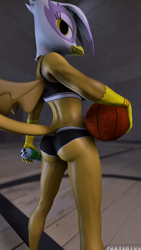 Size: 1080x1920   Tagged: safe, artist:foxventus, gilda, anthro, griffon, 3d, basketball, bottle, clothes, female, gildonk, holding, leggings, looking at you, looking over shoulder, rear view, shorts, solo, source filmmaker, sports, sports bra, sports shorts, tail, wings