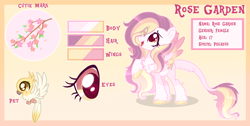 Size: 3444x1741   Tagged: safe, artist:lazuli, artist:sugaryicecreammlp, oc, oc only, oc:rose garden, bird, pegasus, pony, adopted offspring, base used, chest fluff, colored wings, female, leonine tail, looking up, mare, multicolored wings, offspring, parent:big macintosh, parent:fluttershy, parents:fluttermac, pet oc, reference sheet, solo, unshorn fetlocks, wings