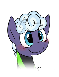 Size: 1127x1469 | Tagged: safe, artist:fakskis, rolling thunder, pegasus, pony, the washouts (episode), blushing, bust, clothes, cute, female, mare, portrait, simple background, smiling, solo, white background