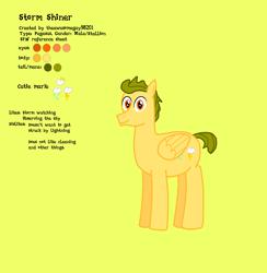 Size: 2585x2653 | Tagged: safe, artist:theawesomeguy98201, oc, oc:stormshiner, pegasus, pony, male, reference sheet, stallion