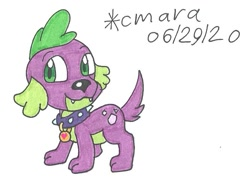Size: 849x618 | Tagged: safe, artist:cmara, spike, dog, equestria girls, collar, cute, male, solo, spikabetes, spike the dog, traditional art
