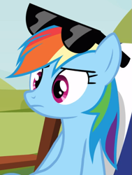 Size: 641x846 | Tagged: safe, screencap, rainbow dash, too many pinkie pies, chair, cropped, solo, sunglasses