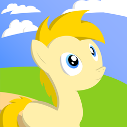 Size: 2048x2048 | Tagged: safe, artist:edchdx, oc, oc:sky hanger, earth pony, solo