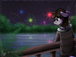 Size: 1024x768 | Tagged: safe, artist:loni_ee_, oc, oc only, anthro, earth pony, clothes, earth pony oc, fireworks, frown, lake, night, outdoors, redraw, signature, solo, stars, tree