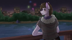 Size: 1080x607 | Tagged: safe, artist:loni_ee_, oc, oc only, anthro, earth pony, building, clothes, earth pony oc, fireworks, frown, lake, looking back, night, outdoors, redraw, signature, solo, stars, tree