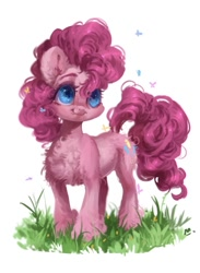 Size: 621x850 | Tagged: safe, artist:maggephah, pinkie pie, butterfly, earth pony, pony, chest fluff, ear fluff, female, flank fluff, grass, looking at something, looking up, mare, partial background, smiling, solo, standing, tongue out, unshorn fetlocks