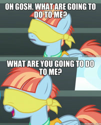 Size: 600x744 | Tagged: safe, edit, edited screencap, screencap, windy whistles, pegasus, pony, parental glideance, blindfold, caption, family guy, female, image macro, mare, text