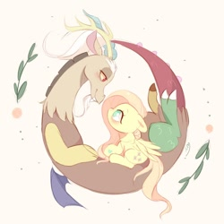 Size: 1024x1024 | Tagged: safe, artist:ipun, discord, fluttershy, draconequus, pegasus, pony, bedroom eyes, blushing, curled up, cute, discoshy, eye contact, female, floppy ears, looking at each other, male, mare, no pupils, profile, shipping, sitting, straight, wings