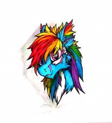 Size: 2232x2448 | Tagged: safe, artist:creature.exist, rainbow dash, pegasus, pony, alternative design, design, photo, solo