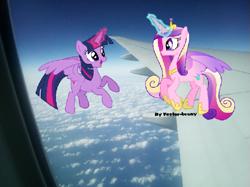 Size: 719x539 | Tagged: safe, artist:topsangtheman, artist:vector-brony, princess cadance, twilight sparkle, alicorn, pony, cloud, irl, offscreen character, photo, plane, ponies in real life, twilight sparkle (alicorn)