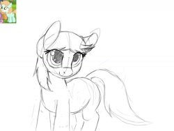 Size: 1600x1200 | Tagged: safe, artist:aftercase, peach fuzz, doodle, female, filly, sketch, solo