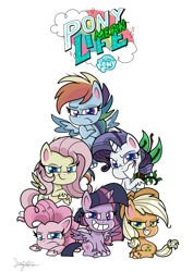 Size: 1000x1414 | Tagged: safe, artist:shungire, mean applejack, mean fluttershy, mean pinkie pie, mean rainbow dash, mean rarity, mean twilight sparkle, alicorn, earth pony, pegasus, pony, unicorn, my little pony: pony life, the mean 6, applejack's hat, clone, clone six, cowboy hat, evil grin, female, grin, hat, logo, mare, mean six, my little pony logo, pony life logo, signature, simple background, smiling, transparent background