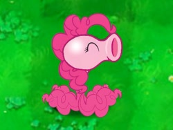 Size: 425x319 | Tagged: artist needed, safe, pinkie pie, earth pony, original species, plant pony, cute, eyes closed, funny, grass, grass field, peanuts, peashooter, plant, plants vs zombies, simple background, species swap, wat