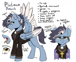 Size: 1700x1386   Tagged: safe, artist:dark lightning, oc, oc only, oc:platinum preach, pegasus, pony, vampire, clothes, cyrillic, priest, reference sheet, russian, simple background, sketch, solo, white background