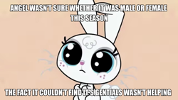 Size: 900x506 | Tagged: safe, screencap, angel bunny, rabbit, my little pony: pony life, the fast and the furriest, spoiler:pony life s01e11, ambiguous gender, angelbetes, animal, caption, cute, eyelashes, freckles, image macro, solo, text