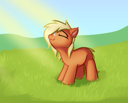 Size: 989x800 | Tagged: safe, artist:cutelewds, earth pony, pony, basking in the sun, crepuscular rays, cute, grass, grass field, smiling, solo, verity