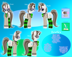 Size: 9000x7100 | Tagged: safe, artist:pokemonfan111, oc, oc:gitte, pony, unicorn, cute, digital art, female, info, reference sheet