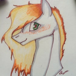 Size: 1080x1080 | Tagged: safe, artist:olyaandspid, oc, oc only, earth pony, pony, bust, earth pony oc, freckles, signature, smilign, solo, traditional art