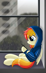 Size: 1236x1963 | Tagged: safe, artist:15.1.14, oc, oc only, pegasus, pony, cellphone, clothes, phone, rain, solo, window