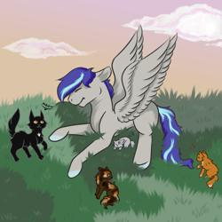 Size: 1000x1000 | Tagged: safe, artist:lebalisa, oc, oc:aspen volare, cat, pegasus, pony