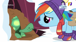 Size: 540x303 | Tagged: safe, screencap, rainbow dash, tank, pegasus, pony, tortoise, tanks for the memories, azteca 7, clothes, earmuffs, female, male, mare, snow, tv azteca, winter, winter outfit