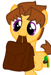 Size: 510x752   Tagged: safe, artist:theedgyduck, oc, oc only, oc:discovered mystery, earth pony, bag, base used, male, simple background, solo, white background
