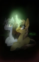Size: 500x800 | Tagged: artist needed, safe, oc, oc only, oc:silver bristle, earth pony, pony, unicorn, darkness, digital art, female, glowing horn, horn, male, mare, missing accessory, simple background, stallion