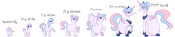 Size: 14000x3000   Tagged: safe, artist:chelseawest, oc, oc:bundle joy, alicorn, earth pony, pony, age progression, alicornified, baby, baby pony, belly, blushing, earth pony oc, female, filly, foal, heart, jewelry, looking back, multiple pregnancy, peytral, pfft, pregnant, race swap, regalia, sigh, teenage pregnancy, teenager