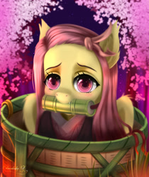 Size: 3250x3875 | Tagged: safe, artist:darksly, fluttershy, bat pony, pegasus, pony, alternate hairstyle, barrel, basket, bat ponified, bit gag, cherry blossoms, clothes, crossover, demon slayer, ear fluff, female, flower, flower blossom, flutterbat, gag, kimetsu no yaiba, kimono (clothing), looking at you, mare, mouth hold, nezuko kamado, pony in a basket, race swap, red eyes, solo, three quarter view, wings