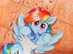 Size: 1940x1454 | Tagged: safe, artist:liaaqila, derpibooru exclusive, rainbow dash, human, pegasus, pony, :<, behaving like a cat, cute, dashabetes, hand, human on pony petting, petting, ponified animal photo, this will not end well, traditional art