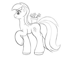 Size: 2000x2000 | Tagged: safe, artist:redquoz, roseluck, earth pony, pony, atg 2020, background pony, cutie mark, flower, flower pot, newbie artist training grounds, rose, sketch, solo
