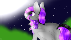 Size: 2560x1440 | Tagged: safe, artist:shinningblossom12, oc, oc only, pegasus, pony, clothes, looking up, night, outdoors, pegasus oc, scarf, smiling, solo, speedpaint available, stars, wings