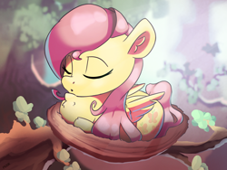 Size: 3458x2595 | Tagged: safe, artist:nookprint, fluttershy, bird, pegasus, pony, behaving like a bird, birb, chest fluff, cute, female, forest, mare, nest, shyabetes, sleeping, solo, tree, tree branch