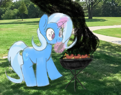 Size: 1388x1080 | Tagged: safe, anonymous artist, trixie, pony, unicorn, female, food, grill, hot dog, irl, levitation, link, magic, mare, meat, photo, ponies eating meat, ponies in real life, sausage, solo, telekinesis, the legend of zelda, tongs, wiener