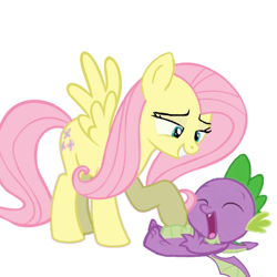 Size: 1080x1080   Tagged: safe, artist:princessdestiny200i, fluttershy, spike, dragon, pegasus, pony, duo, female, grin, laughing, male, mare, raised hoof, simple background, smiling, tickling, white background, winged spike