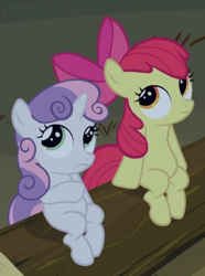 Size: 542x727 | Tagged: safe, screencap, apple bloom, sweetie belle, sleepless in ponyville, cropped, duo, log, sitting