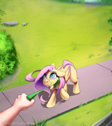 Size: 1687x1891 | Tagged: safe, artist:sugarlesspaints, fluttershy, human, pegasus, pony, arm, behaving like a dog, collar, colored wings, colored wingtips, cute, diabetes, explicit source, female, floppy ears, hand, leash, looking at you, mare, offscreen character, pet play, pov, raised hoof, shyabetes