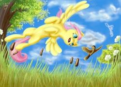 Size: 1920x1379 | Tagged: safe, artist:firefly_sunset, artist:piiec, fluttershy, bird, pegasus, pony, birds doing bird things, blue eyes, cattails, cloud, cloudy, flower, flying, grass, grass field, sky, tree
