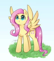 Size: 1800x2000 | Tagged: safe, artist:phoenixgoldensilver, fluttershy, pegasus, pony, :o, cute, female, mare, open mouth, shyabetes, solo, spread wings, wings