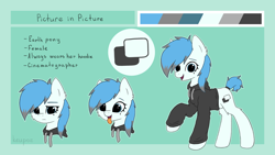 Size: 2560x1440 | Tagged: safe, artist:keupoz, oc, oc only, oc:picture in picture, earth pony, pony, beauty mark, clothes, commission, earth pony oc, female, hoodie, mare, reference sheet, simple background, tail wrap, text, tongue out