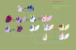 Size: 1280x835 | Tagged: safe, artist:y0m3, night light, pound cake, princess cadance, princess flurry heart, shining armor, tempest shadow, twilight sparkle, twilight velvet, alicorn, family, family tree, female, lesbian, magical lesbian spawn, male, nightvelvet, offspring, parent:pound cake, parent:princess cadance, parent:princess flurry heart, parent:shining armor, parent:tempest shadow, parent:twilight sparkle, parents:poundflurry, parents:shiningcadance, parents:tempestlight, poundflurry, shiningcadance, shipping, straight, tempestlight, twilight sparkle (alicorn)