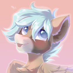 Size: 1500x1500 | Tagged: safe, artist:kebchach, oc, pegasus, pony, bust, chest fluff, ear fluff, open mouth, pegasus oc, pink background, simple background, smiling, solo, wings