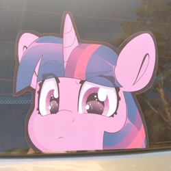 Size: 794x794 | Tagged: safe, artist:partylikeanartist, twilight sparkle, alicorn, pony, unicorn, anime, anime eyes, anime style, bumper sticker, car, chibi, cute, etsy, eye clipping through hair, eyebrows, eyebrows visible through hair, ford focus, irl, looking at you, merchandise, peeking, photo, solo, sticker, twiabetes, twilight sparkle (alicorn)
