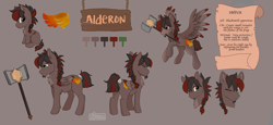 Size: 2355x1080 | Tagged: safe, artist:serbhka, oc, oc only, oc:alderon, pegasus, pony, braided ponytail, chest fluff, facial hair, goatee, hammer, male, multeity, one eyed, reference sheet, scar, solo, stallion, tail wrap, text